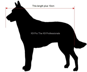 Measure your dog for a crate