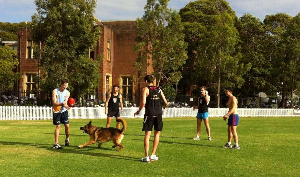 AFL boys 1