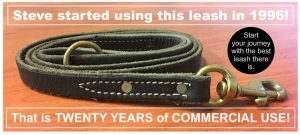Leather Leash working dog