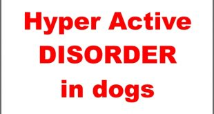 Hyper active disorder