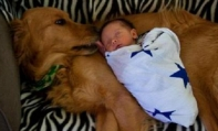 My baby and my dog