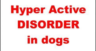 Hyper active disorder