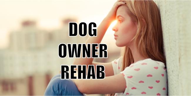 Dog Owner Rehabilitation