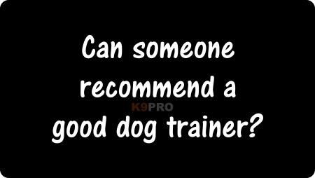 good dog trainer